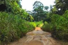 Installation Guinée